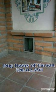 Hale Dog Door Installer Az Dog Door Installation Arizona
